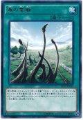 【レア】 竜の霊廟