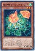 【ノーマル】 化合獣オキシン・オックス