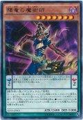 【レア】 降竜の魔術師