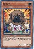 【ノーマル】 横綱犬
