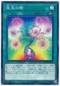 【ノーマル】 宝玉の樹