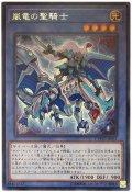 【レア】 嵐竜の聖騎士