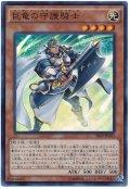 巨竜の守護騎士【スー】