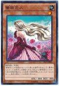 薔薇恋人【ノー】