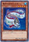 竜宮の白タウナギ【ノー】