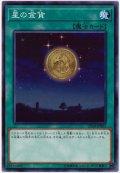 星の金貨【ノー】