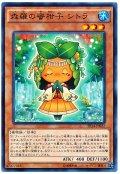 森羅の蜜柑子 シトラ【ノー】