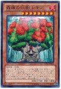 森羅の仙樹 レギア【レア】
