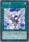 天馬の翼【ノー】
