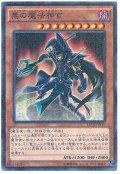 黒の魔法神官【パラ】