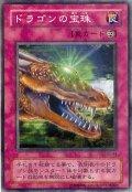 ドラゴンの宝珠【レア】