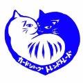 【送料込み】訳ありBOX ノーマル・字レア8400〜8000枚詰め合わせ