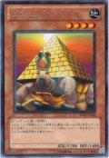 ピラミッド・タートル【レア】