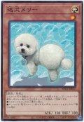 迷犬メリー【ノレ】