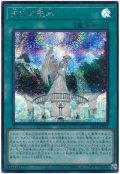 天空の聖水【シク】