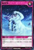 猛吹雪【ノー】